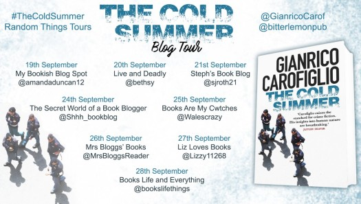 The Cold Summer Blog Tour Poster