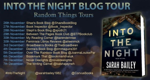 Into The Night Blog Tour Poster